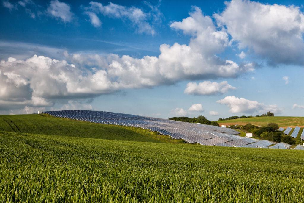 cornfield-solar-farm