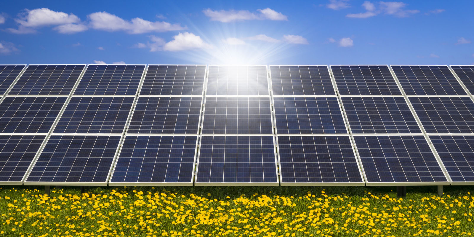 ACTION ALERT: MORATORIUM ON INDUSTRIAL SOLAR ON AG LAND NEEDED